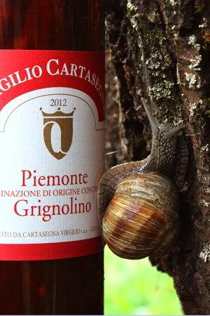 Piemonte Grignolino DOC - slowine