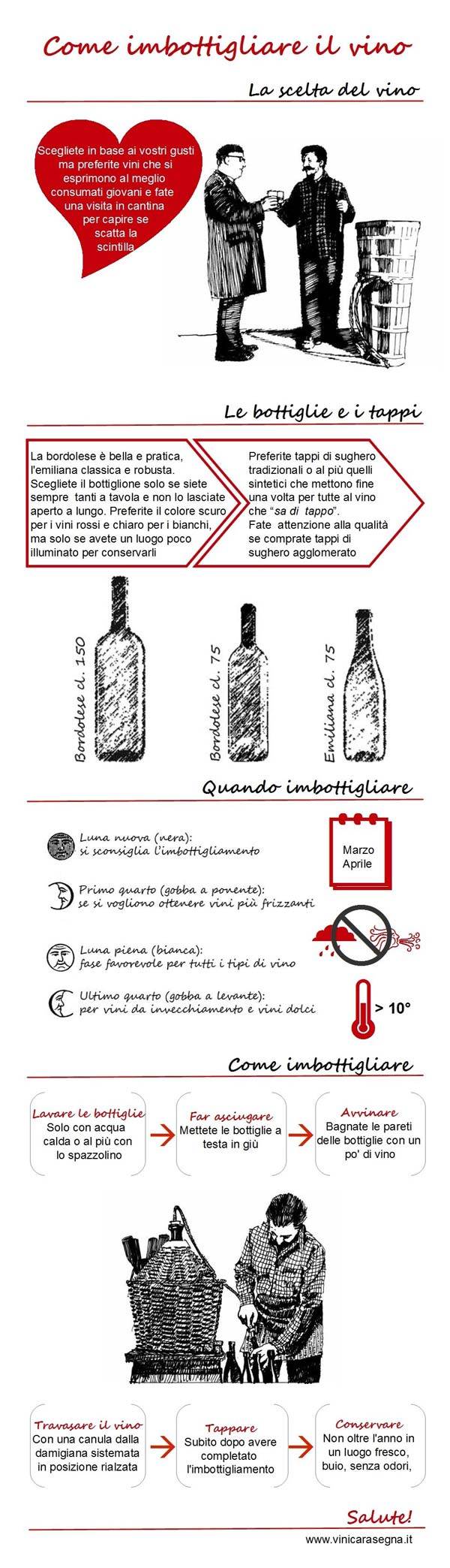 Infografica: come imbottigliare il vino