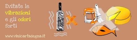 Come conservare i vini