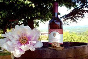 Vendita Piemonte Grignolino DOC