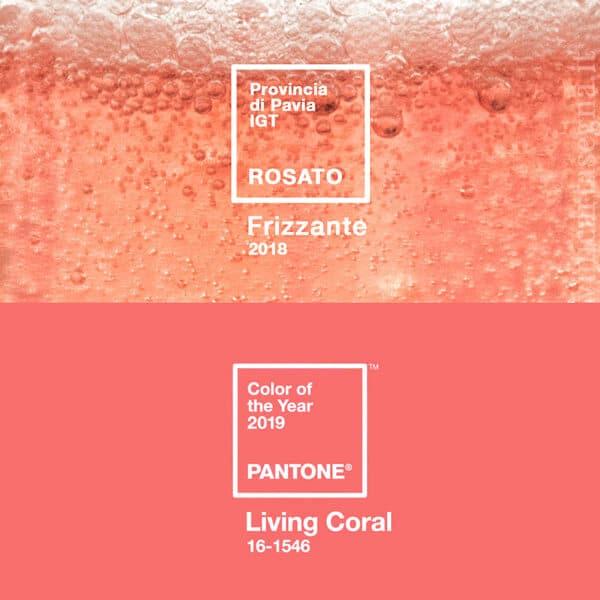 Vino rosato a confronto con il colore Pantone 2019, living coral